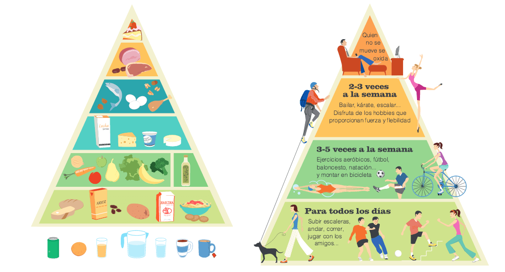 Alimentación, nutrición e hidratación en el deporte | Gym-In
