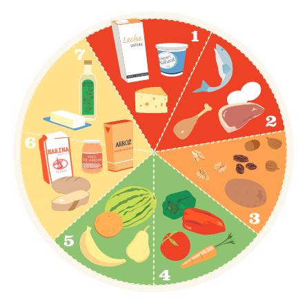 Alimentacin nutricin e hidratacin en el deporte  GymIn