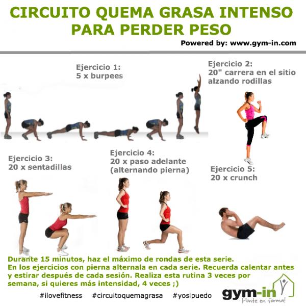 Circuito Quema Grasa Intenso Para Perder Peso 15 Minutos Gym In